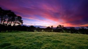 twilight_in_the_meadow-1600x900