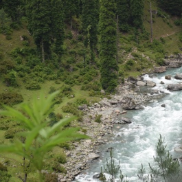 River, river on the earth, why does thou with water dearth?